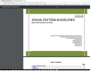 visual-editing-guidelines